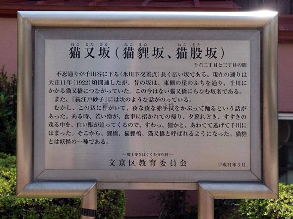 sengoku-3