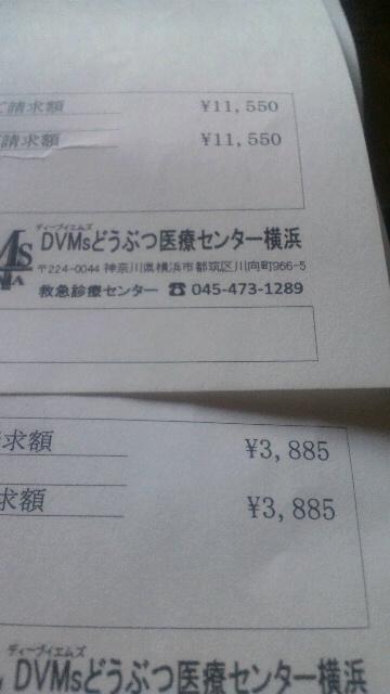 2014032322110000.jpg
