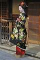 舞妓さん撮影のこと。 (2014年・2~5月度)-2