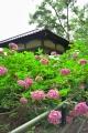 藤森神社5