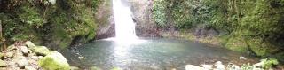 水俣の滝2014-5-17 (15)