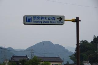 2014-9-2 えびの~相良 (7)