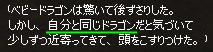 セリフ ドラゴン育成イベント 70