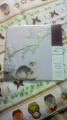 DSC02092.jpg