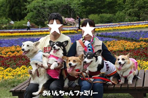 くじゅう花公園2 2014-5-18-10