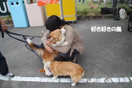 お散歩ウオッチングinP2久山 2014-5-25-10