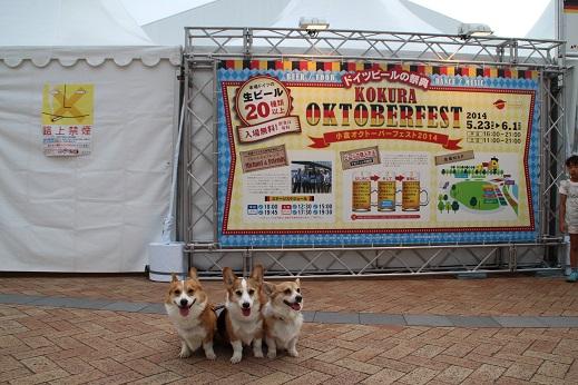 ドイツビールの祭典 2014-5-25-6