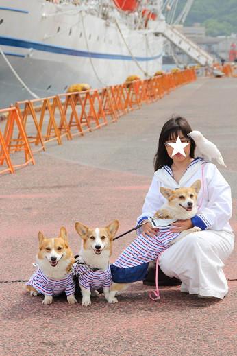日本丸 2014-5-27-9