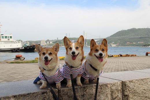 平日の門司港1 2014-5-27-4