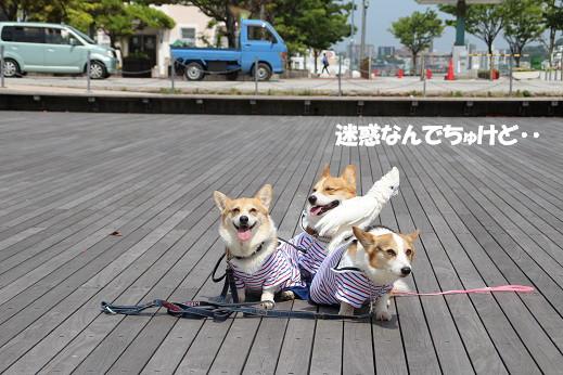 平日の門司港2 2014-5-27-2