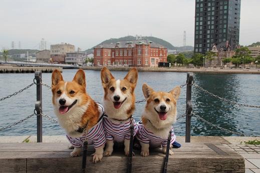 平日の門司港2 2014-5-27-4