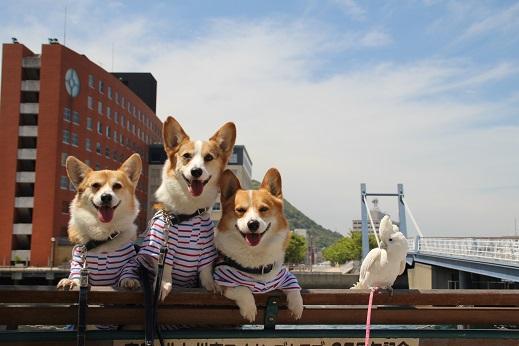 平日の門司港2 2014-5-27-11