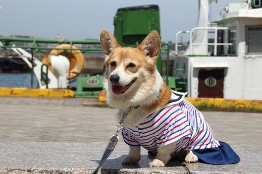 平日の門司港2 2014-5-27-13