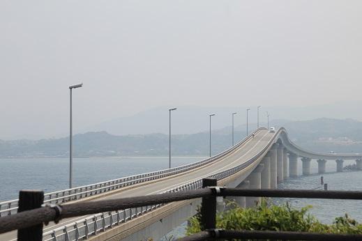 ピノ初角島 2014ー5-2-1