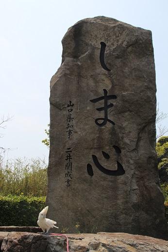 ピノ初角島 2014-5-2-3