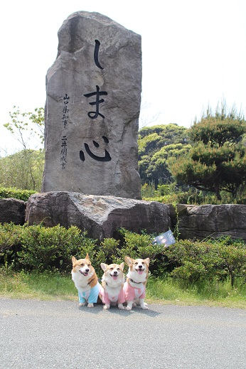 しま心と礼拝堂 2014-5-2ー3