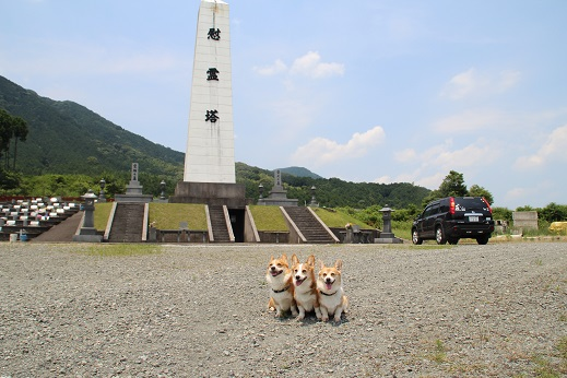 動愛園 2014-6-29-2