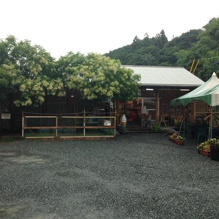 糸島 2014-7-6-6
