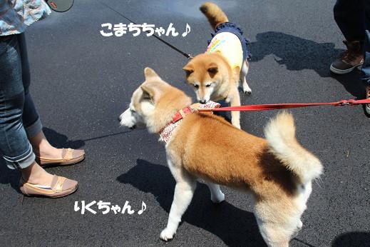 鯛生金山後編 2014-7-20-4