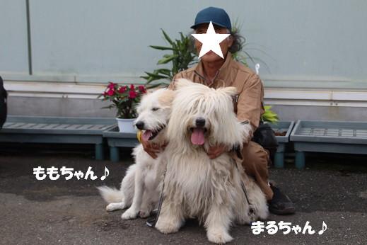 ダイキ福岡東 2014-7-27-9