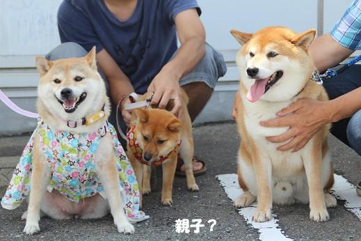 ダイキ福岡東 2014-7-27-12