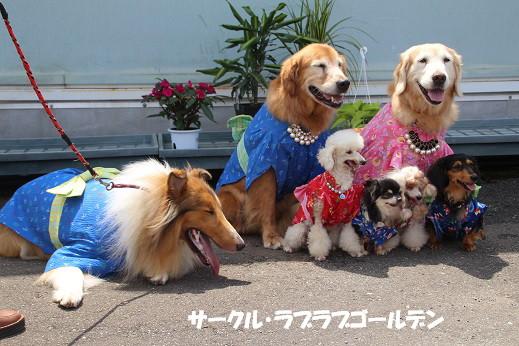 ダイキ福岡東 2014-7-27-13