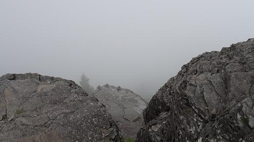 王ヶ頭 霧