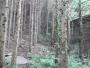 細野ダム堰堤