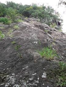 二番岩中央