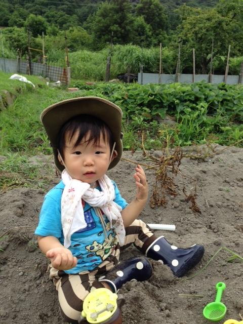 芋掘り (480x640)