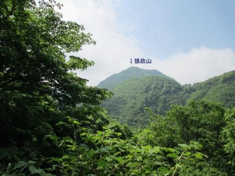 SYK(猿政山) 002-001