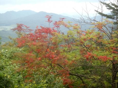 熊城山〔天狗シデ) 058-001
