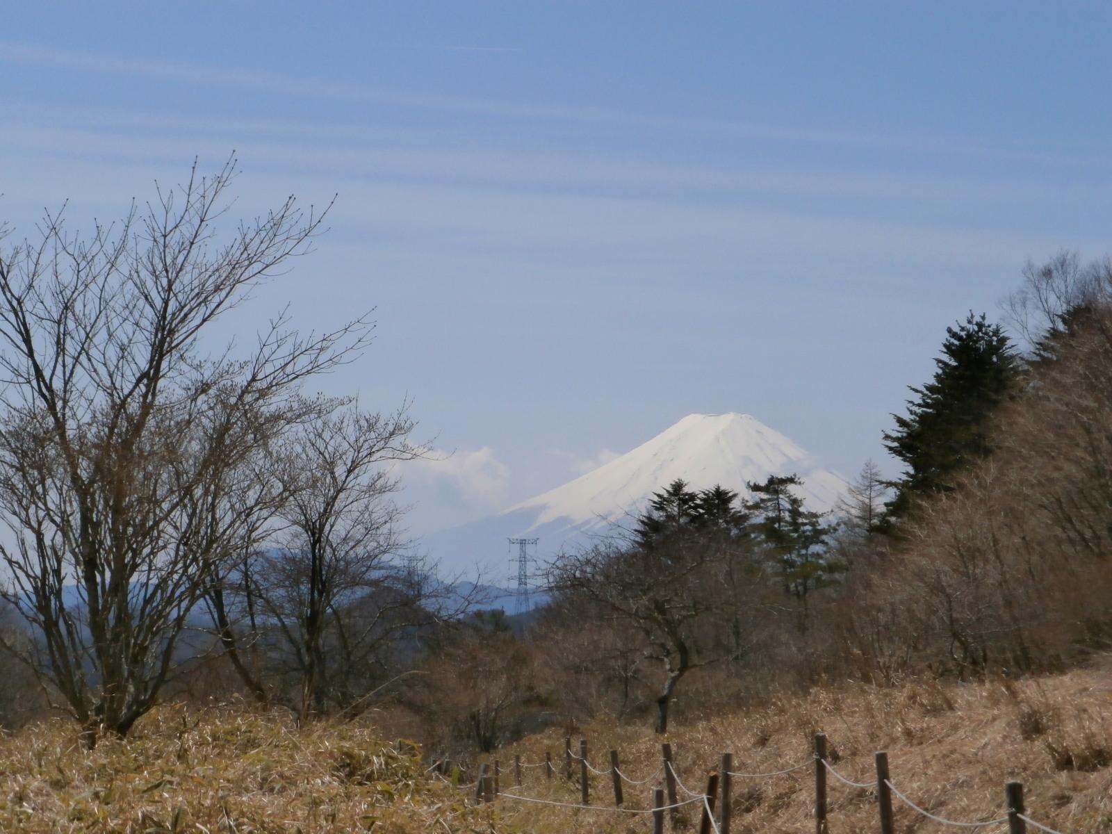 丸川峠より富士山