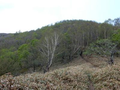 地蔵岳登山道2