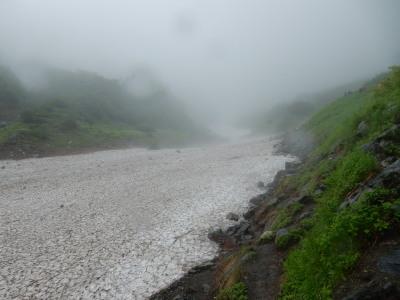 大樺沢雪渓