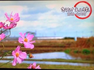 20131205_えん旅6