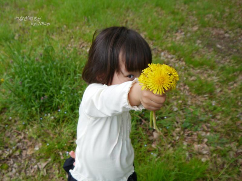 2014,4,10『春の散策』