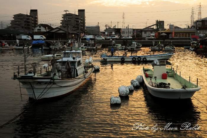 漁船 愛媛県西条市新堀下 西条漁港