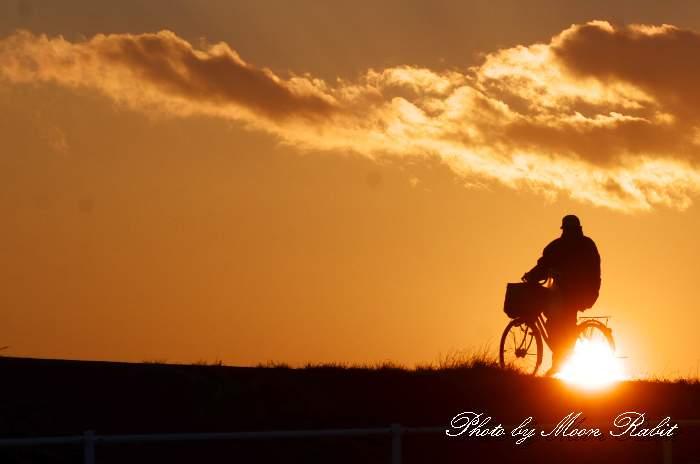 夕陽と自転車 愛媛県西条市 加茂川堤防