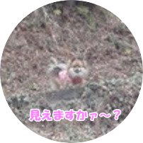 20140220-1.png