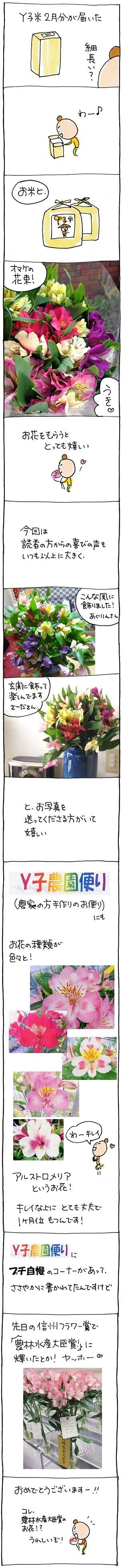 Y子農園2月-01