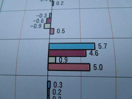 DSCN4618_グラフ