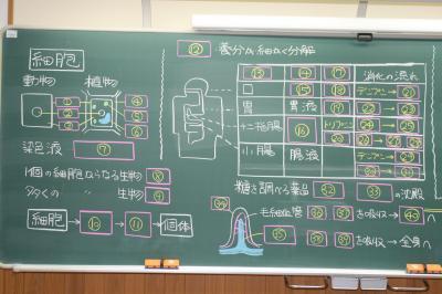 理科テスト勉強2