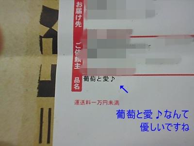 P1070208.jpg
