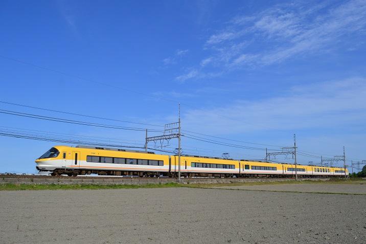 DSC_2501.jpg