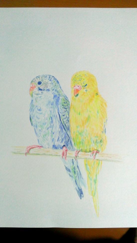 色鉛筆3_convert_20140601002318