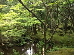 kyoto2014618.jpg