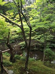 kyoto2014619.jpg