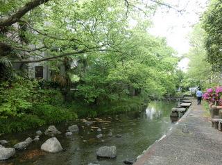 三島の疎水