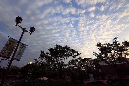 20140517_03.jpg